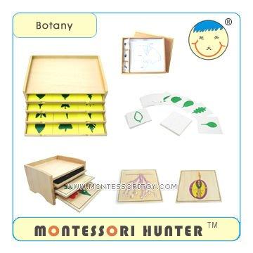 3.Botany