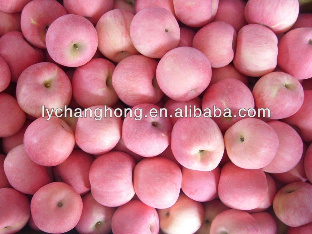 fruit market prices apple