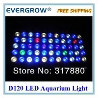 Товары для домашних питомцев evergrow EG-D120 DIY