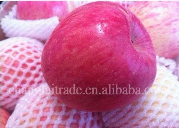 Fruit fresh fuji apple suppliers