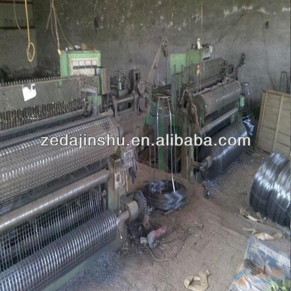 Bird cage welded wire mesh roll