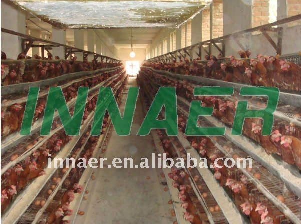 high quality chicken coop hen house supplier(20 years factory ISO9001)