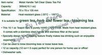 1 pcs Kettle + 9 pcs different  Blooming Tea Flower  heat resistant handmade glass teapot