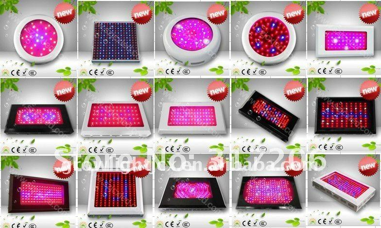 Free shipping led grow light 150W(80*3W),3yeas warranty,HIGH-QUALITY,Dropshipping