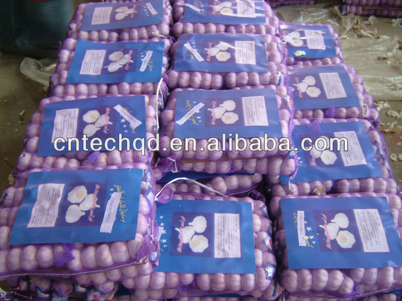 2013 best price fresh natural garlic for sale