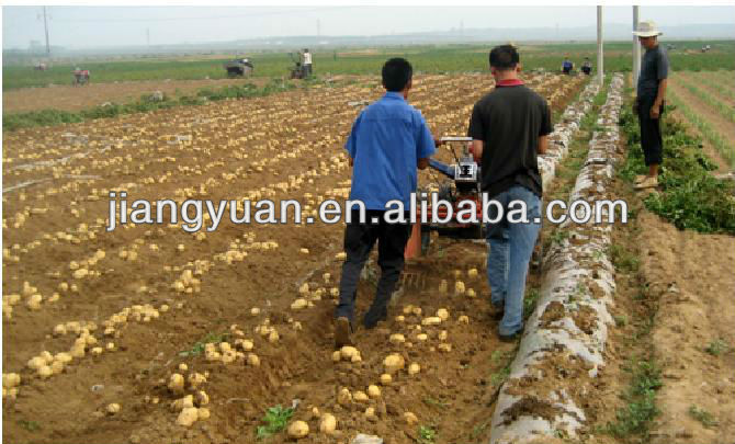 Potato Harvest Machine http://jiangyuan.en.alibaba.com/product/701882723-214794376/potato_harvesting_equipment.html