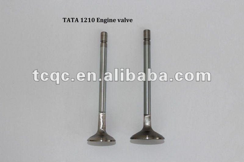 TATA 1210 ENGINE VALVE-O.jpg