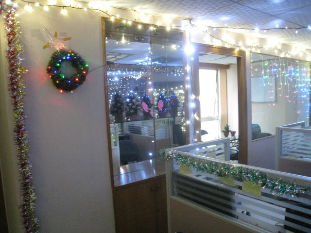2012 LED Twinkle decoration light for holiday