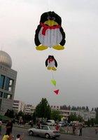 Воздушный змей Handmade 3m T001