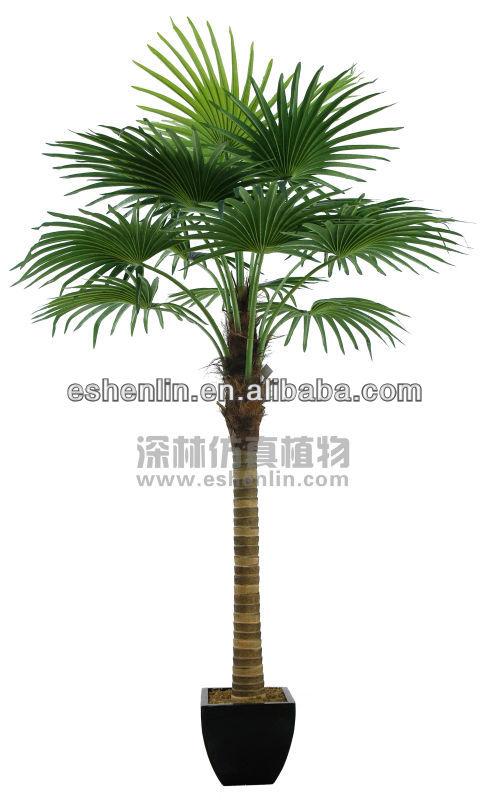 Trois tronc d coration ventilateur palmier artificielle - Plante verte palmier d interieur ...