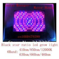 Черная звезда дизайн светодиодных светать 500w