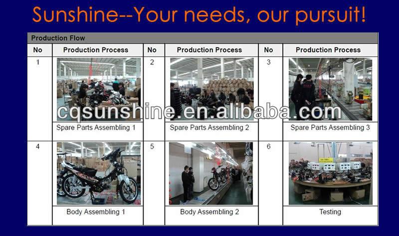 125CC/150CC/200CC/250CC Street Bike/Motorcycle