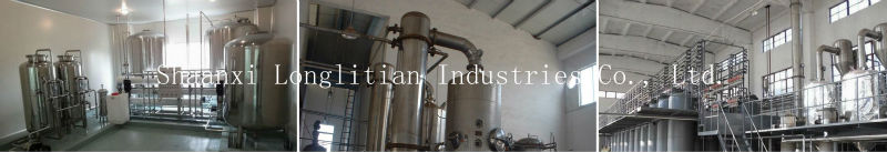 Supplying Organic Echinacea Purpurea extract--Shaanxi LLT Industries