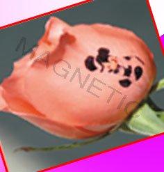 OEM nail art digital photo nail printer