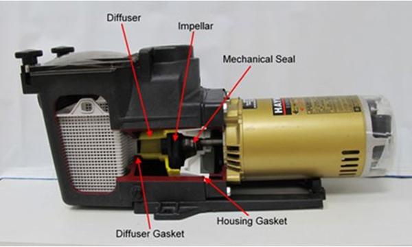 Troubleshooting Century 1 Hp Pool Pump Motor