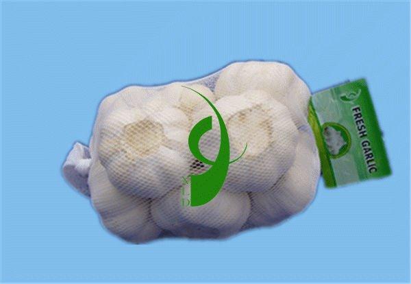 normal white Garlic(2013 new crop)