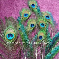 50pcs Beautiful Natural Great Decorations,Peacock Tail feathers,eye feathers