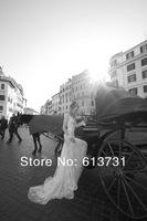 Свадебное платье s 2013 Sexy Cheap Long Sleeve V Neck Pearl Bead Lace Tulles Sheath Bridal Wedding Dresses ID1210