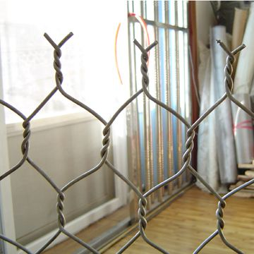 anping hexagonal mesh/double twisted hexagonal wire mesh/hexagonal plastic grille mesh