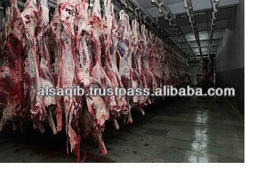halal beef frozen meat, halal frozen boneless beef meat