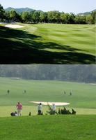 мяч для гольфа PGM 3 20pcs/lot /& AC-YGA2