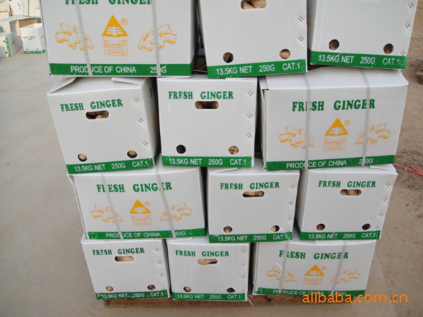 Buyer of Fresh Ground Ginger Could Make Ginger Tea