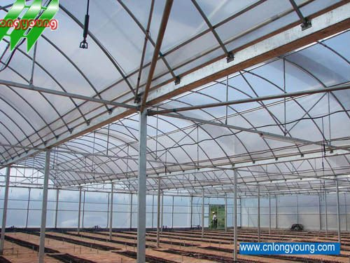 Low Cost Agricultural Greenhouses