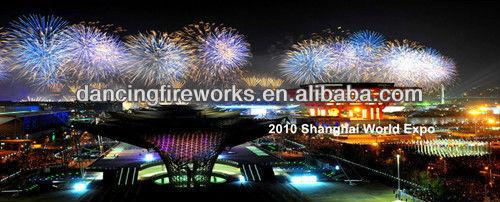 10 Shanghai World Expo__.jpg