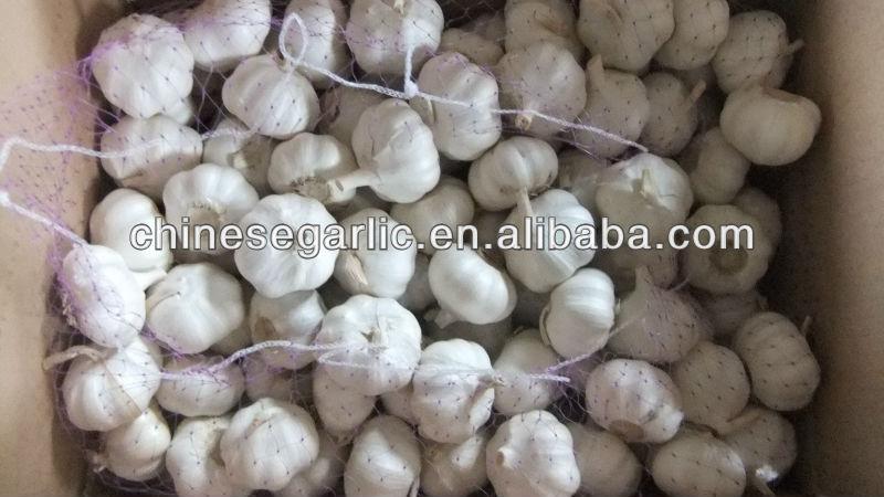 Chinese fresh white garlic /good quality garlic /natural garlic