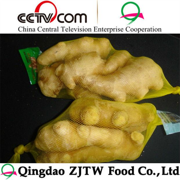 Buyer of Ginger Best Quality new harvest ginger for sale