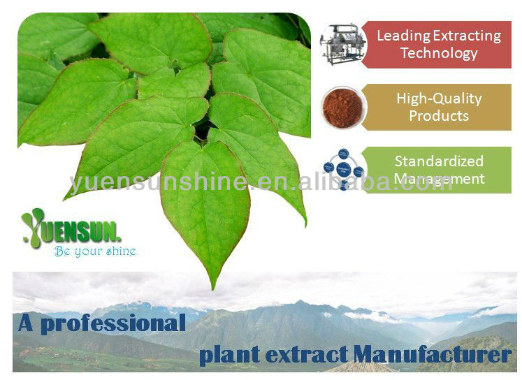 High Quality 100% Natural Grape Seed Extract