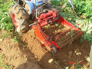 tracteur carotte patate douce r colte machine vendre moisonneuse id de produit 709456703. Black Bedroom Furniture Sets. Home Design Ideas