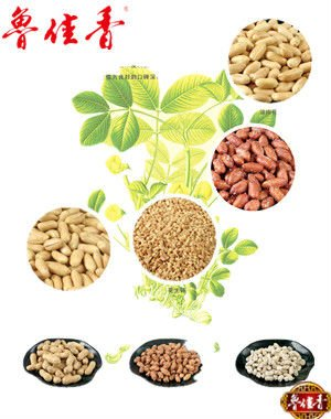 Salted Fried Peanuts with Low Price(MANUFACTURER)