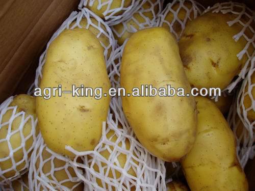 High-quality IQF frozen potato cuts