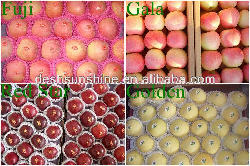 2013 new crop China cheap golden apple fruit