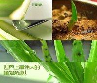 День кремы и увлажняющие OEM 2012