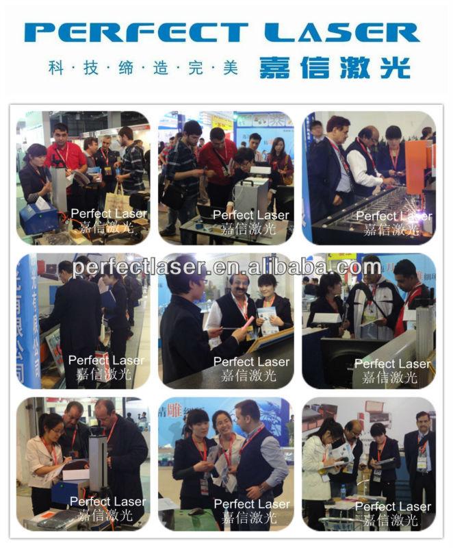 Perfect Laser Exhibition photo 3.jpg