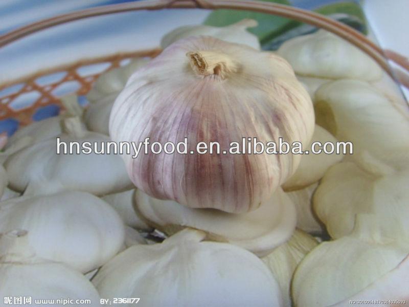 Hot dehydrated natural garlic flakes