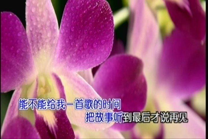 2011-10-08_163305.jpg