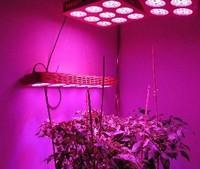 Освещение для растений plgls sp113d