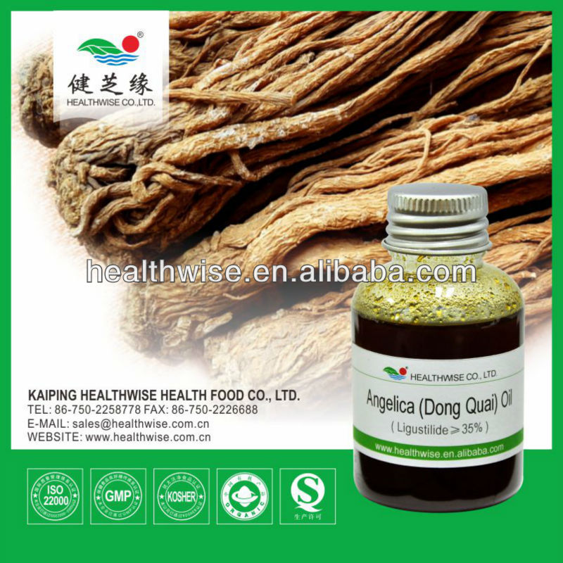 Angelica sinensis Root herb extract oil