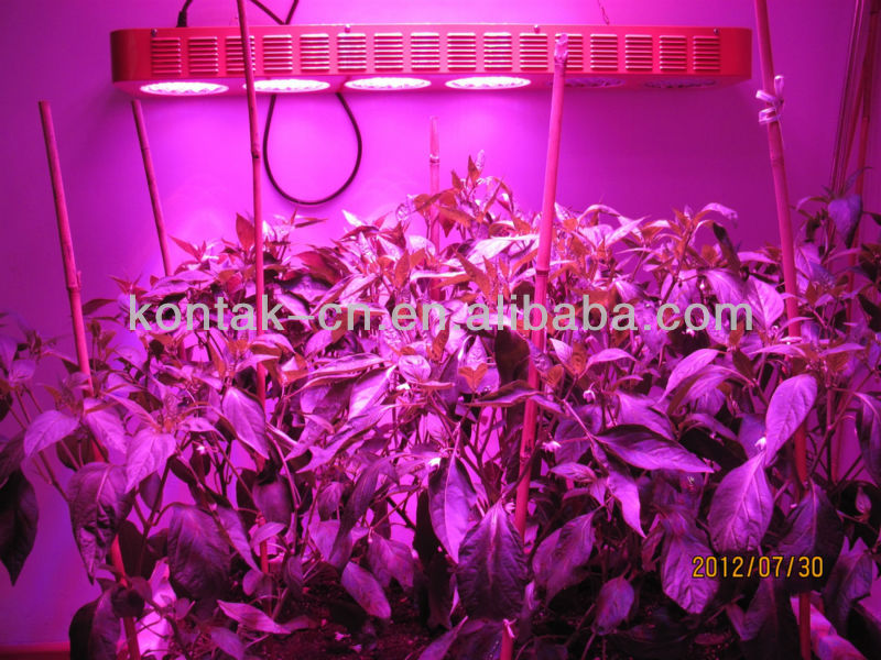 2013 LED Grow Light Veg Grow Light LED Distributors Canada