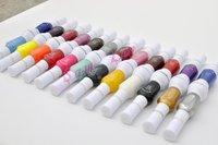 24 Colors 2- Ways Nail Art Brush & Nail Pen Varnish Polish Nail Tools Set + Free Shipping