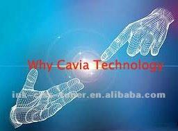 why cavia