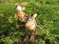 Детская плюшевая игрушка 38 NICI