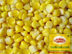 Sweet_corn.jpg