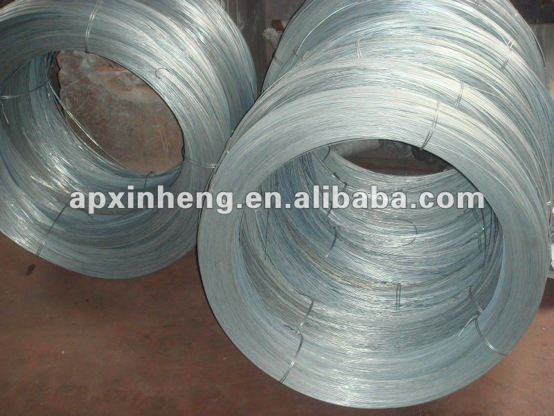 3x3 galvanized welded wire mesh / 11 gauge galvanized welded wire mesh with best quaity ( factory & ISO9001)