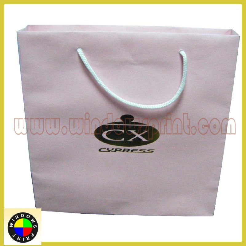 2013 Shopping Gift Paper Bag