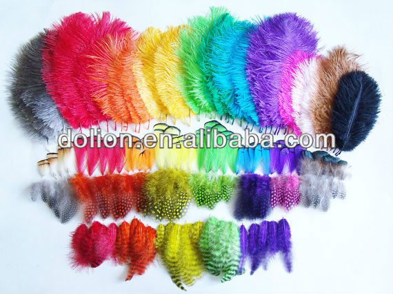 Fashion cheap peacock feathers wholesale