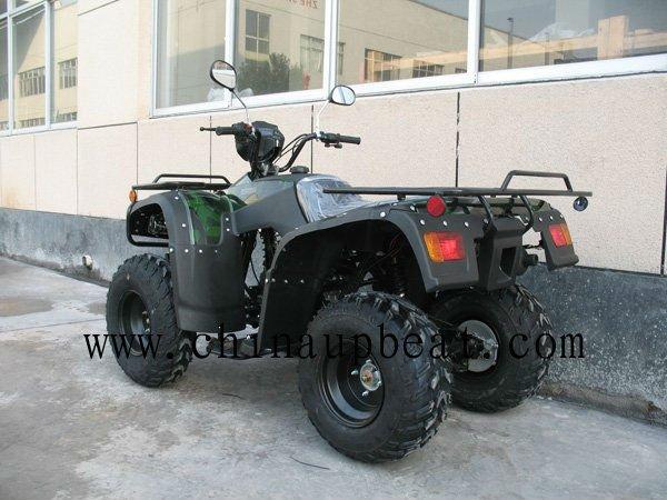 ATV250--4 (10).jpg